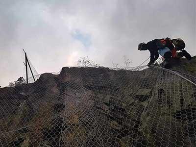 Alpinisti Utilitari Bucuresi - Curatare si toaletare arbori